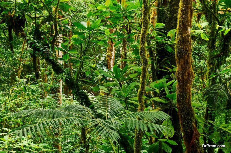 Darien-National-Park-Panama