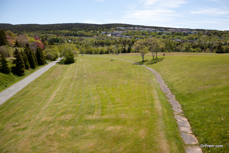 Looking over Bowring Park