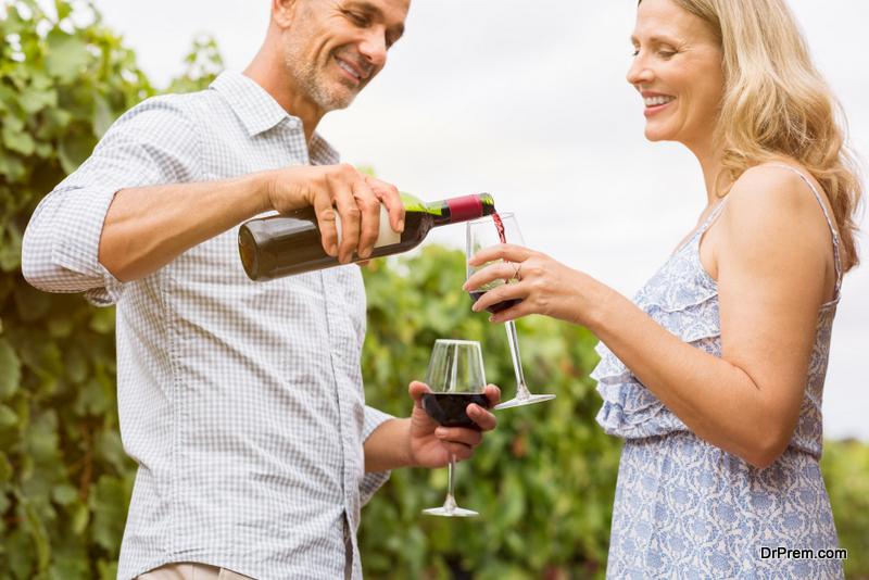 Enjoy Lavaux vineyards