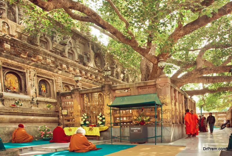 Many prayers sitting around the Bodhi tree