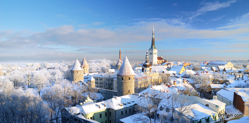 Tallinn city. Estonia. Snow on trees in winter