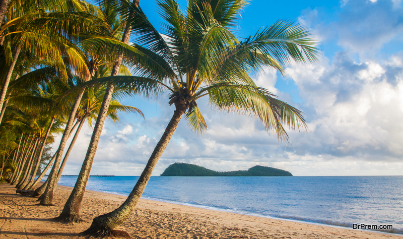 Luxury Experiences Palm Cove Has to Offer